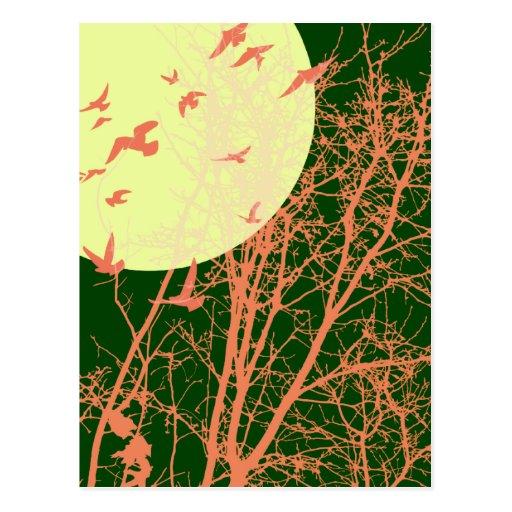 silhouscreen los pájaros tarjetas postales