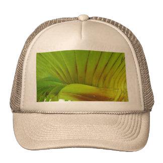 Silk Floss Palm Trucker Hat