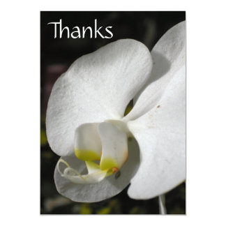 Silk - Orchid - Thank you Postcard