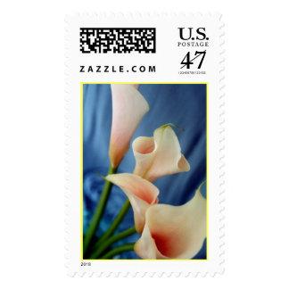 Silk Parade Postage Stamp