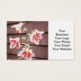 Silk Road Lily Business Card