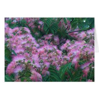 SILK TREE FLOWERS by SHARON SHARPE Greeting Cards