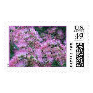 SILK TREE FLOWERS by SHARON SHARPE Postage Stamp