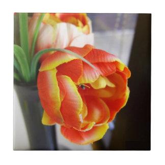 Silk Tulip Ceramic Tiles