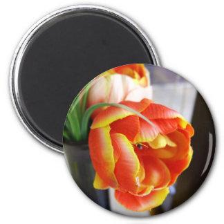 Silk Tulip Fridge Magnets