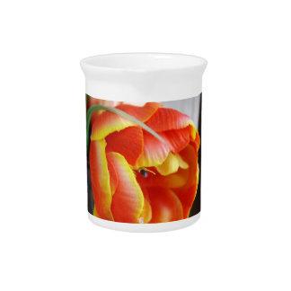 Silk Tulip Pitchers
