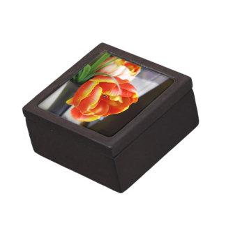 Silk Tulip Premium Gift Box