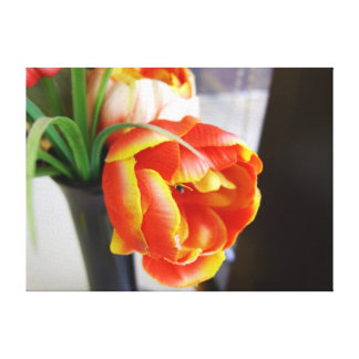 Silk Tulip Stretched Canvas Prints