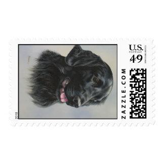 Silka Stamps
