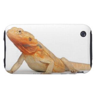SilkBacks scaleless Bearded Dragon - Pogona Tough iPhone 3 Cover
