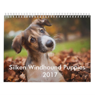 Silken Puppy Calendar 2017