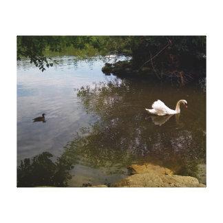 Silken Swan Canvas Print