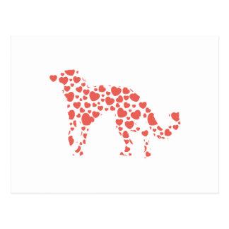 Silken Windhound Post Card