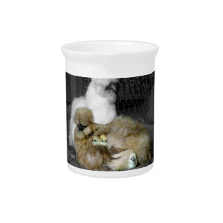 Silkie Hens with Chicks Peeking out of Feathers Beverage Pitcher