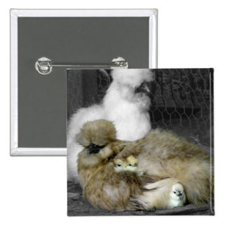 Silkie Hens with Chicks Peeking out of Feathers Pins
