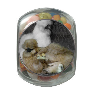 Silkie Hens with Chicks Peeking out of Feathers Glass Candy Jar