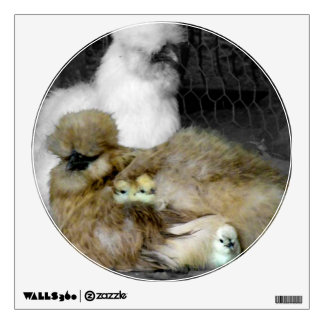 Silkie Hens with Chicks Peeking out of Feathers Room Sticker