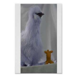 Silkie Poster