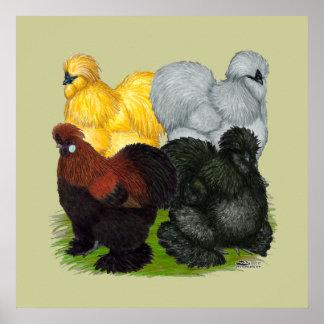 Silkies:  Gallos clasificados Póster