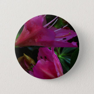 Silky PINK Sensual Flowers : Greetings n Goodluck Button