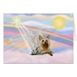 Silky Terrier Cards