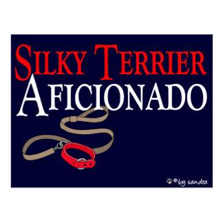 Silky Terrier Postcard