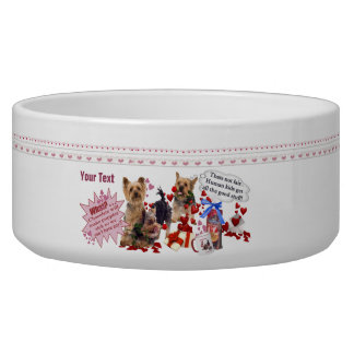 Silky Terrier Puppies Adorable Valentine Design Bowl