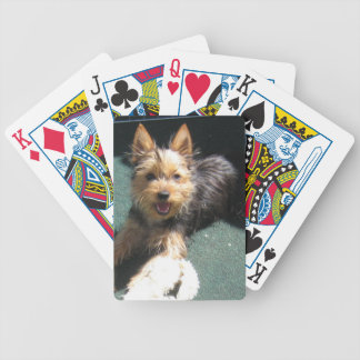 Silky Terrier Puppy Bicycle Playing Cards