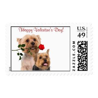 Silky Terrier Red Rose Valentine Stamp #4