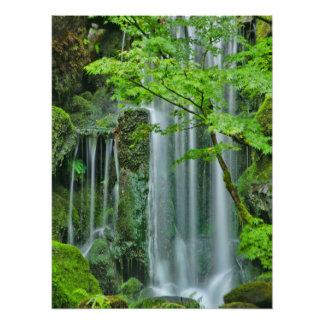 Silky Waterfall Art Photo