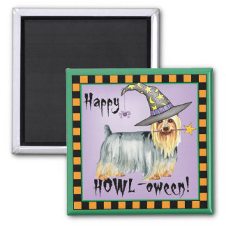 Silky Witch Fridge Magnets