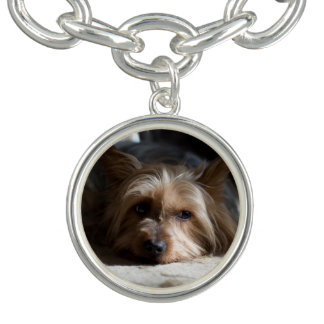 Silky / yorkshire terrier charms and bracelet