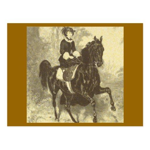 Silla para montar a mujeriegas #002SS del caballo  Tarjetas Postales