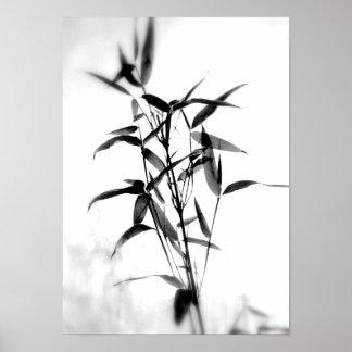 Sillouette de bambú poster