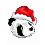 Silly Bear in a Christmas hat Postcard