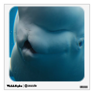 Silly Beluga Whale Wall Decor