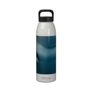 Silly Beluga Whale Reusable Water Bottles