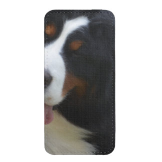 Silly Bernese Mountain Dog iPhone 5 Pouch