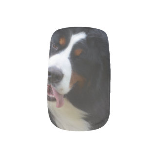 Silly Bernese Mountain Dog Minx Nail Wraps