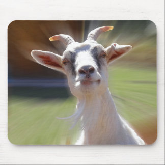 Silly BillyGoat Photograph Mouse Pad