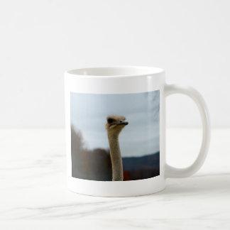 Silly Bird Photo Ostrich Face Head Closeup Coffee Mug