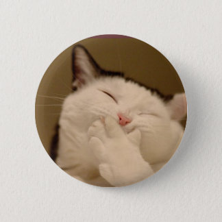 Silly Cat Buton Button