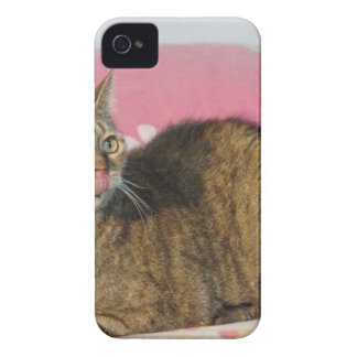 Silly Chevy iPhone 4 Case-Mate Case