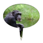 Silly Chimpanzee Cake Topper