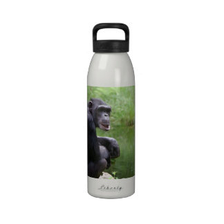 Silly Chimpanzee Drinking Bottle