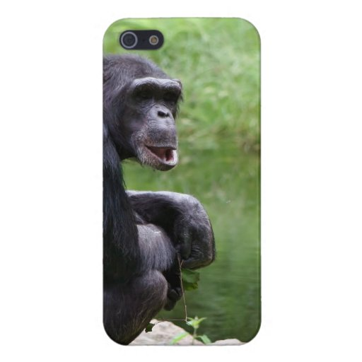Silly Chimpanzee iPhone 5 Covers