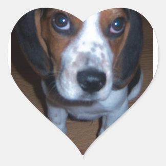 Silly Dog Randy beagle puppy Sticker