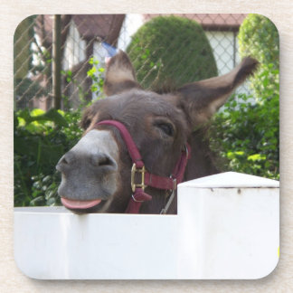 Silly Donkey Drink Coaster