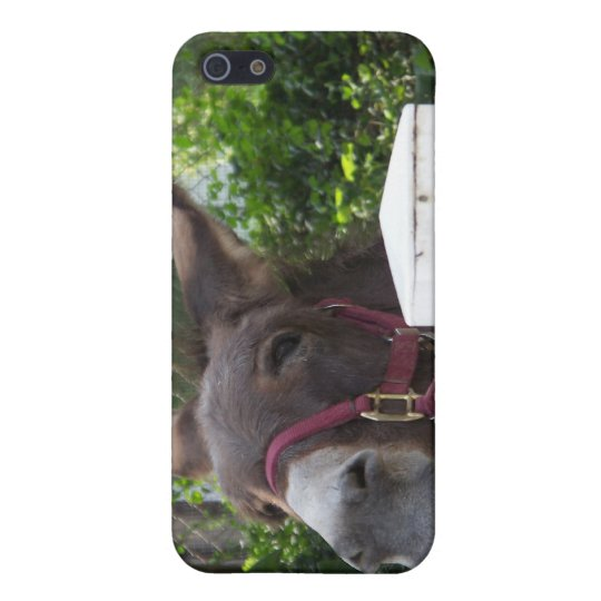 Silly Donkey iPhone SE/5/5s Cover