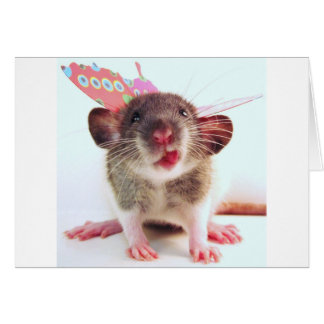 Silly Flutterby Rat Cards